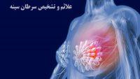 چگونه به موقع سرطان سینه را تشخیص دهیم؟ علائم سرطان سینه و روش های تشخیص آن