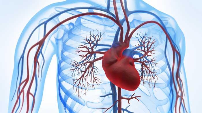 علل نارسایی قلبی مزمن
