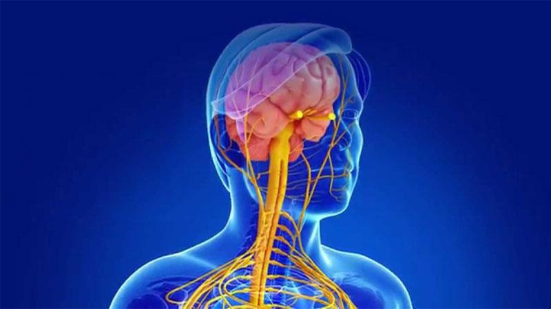 علائم بیماری ام اس و ام اس خفیف، درمان این بیماری و شناخت علت ابتلا به آن