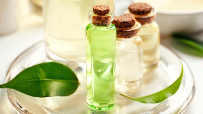 درمان زگیل واژن با روغن درخت چای