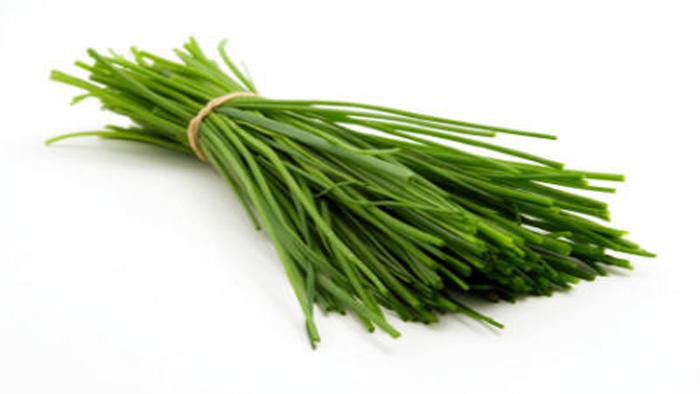 کاشت سبزی تره