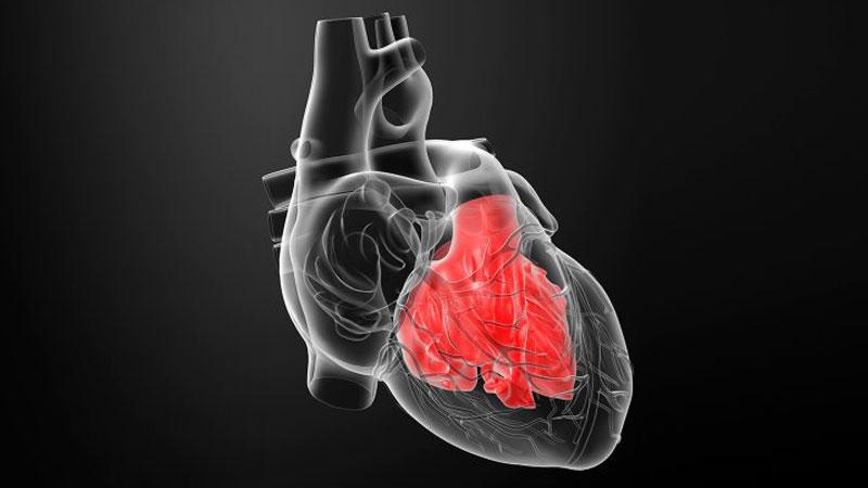 میوکاردیت یا التهاب عضله قلب چیست؟