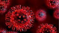 14 باور غلط در مورد کرونا ویروس یا COVID-19