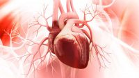 دریچه آئورت قلب و بررسی علل نارسایی و نحوه درمان آن