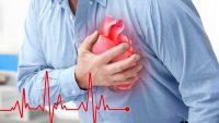 فیلم از نحوه ی تشکیل پلاک و حمله ی قلبی