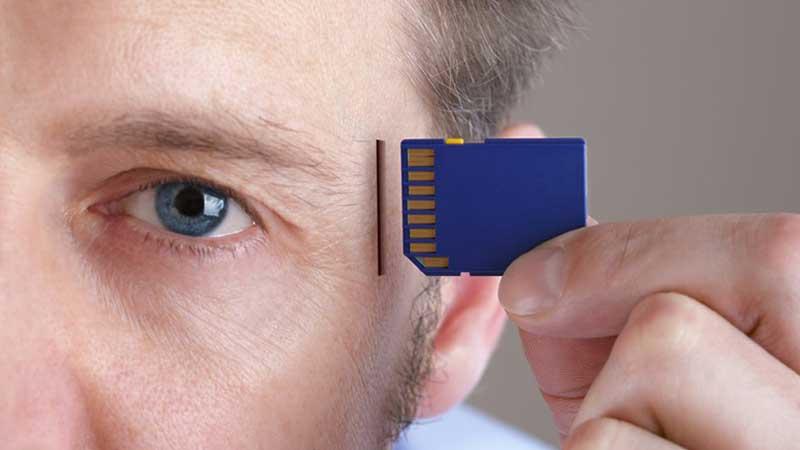 انواع حافظه در انسان ها چگونه دسته می شود ؟