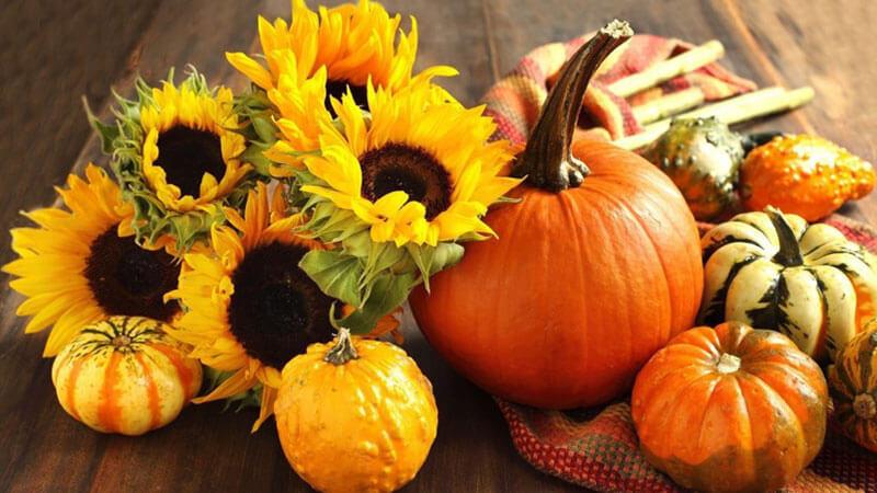 آشنایی با خواص کدو تنبل ،این مهمان دوست داشتنی پاییز