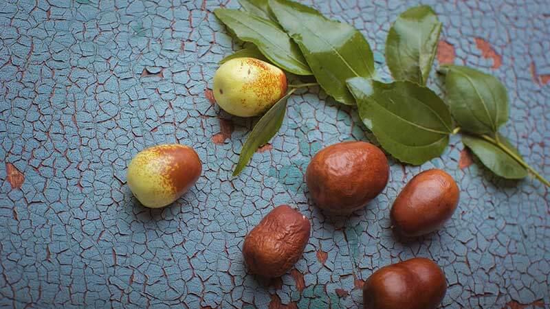 آشنایی با خواص عناب و روش های مصرف این میوه دوست داشتنی